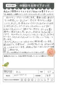ハガキ_2017_04_12